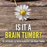 Brain Tumors PLR eBook