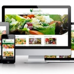 Healthy Eating - PLR Website Offer