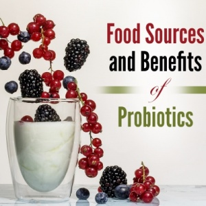 Probiotics PLR Report