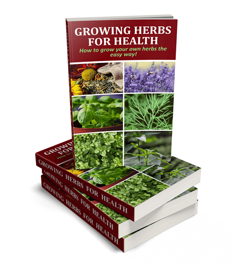 Growing Herbs for Health PLR eBook