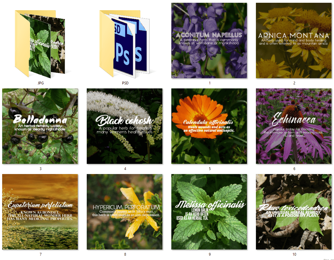 Herbal Remedies PLR Social Posters