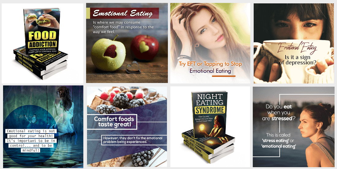 Emotional Eating PLR Special FE Banner