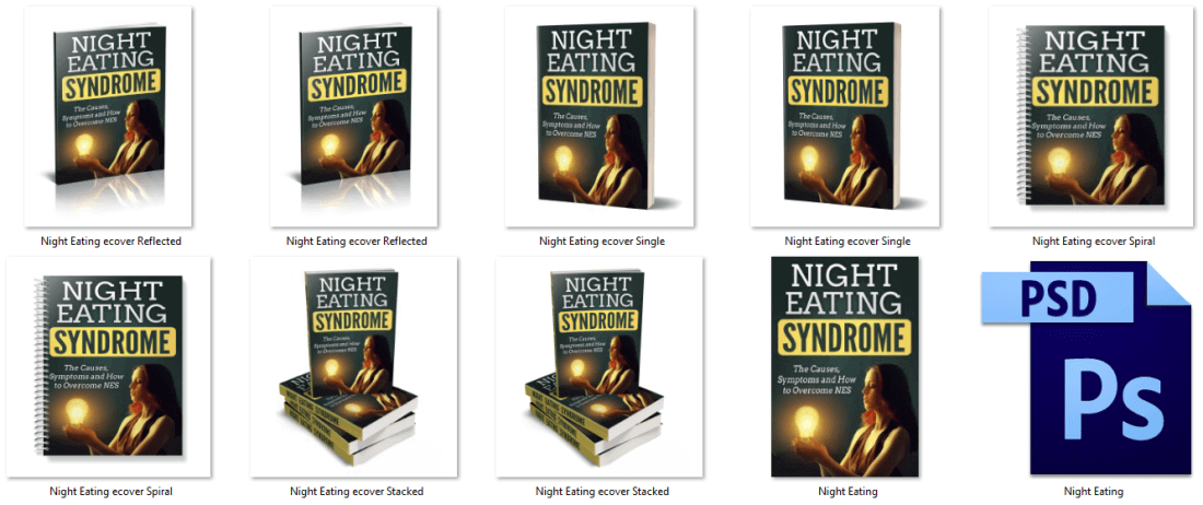Night Eating Syndrome Report PLR eCover Graphics