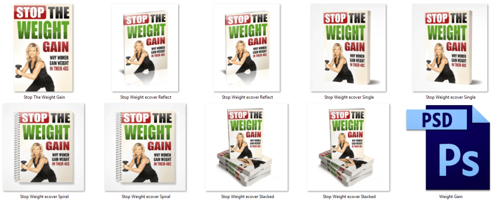 Stop The Weight Gain PLR eBook Cover Graphics