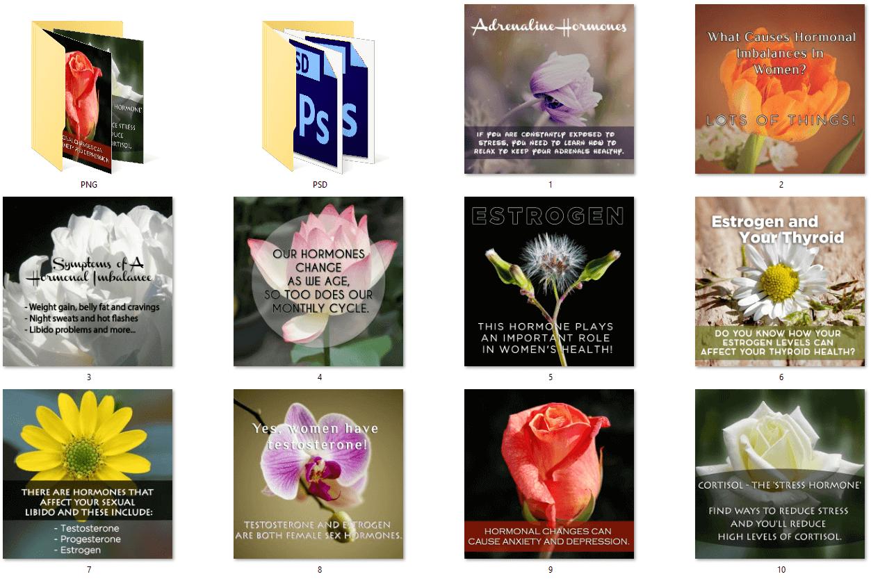 Womens Hormonal Health Social Posters
