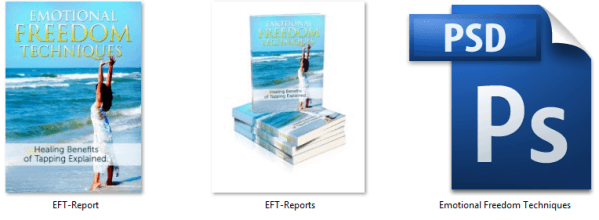 EFT Report Graphic Files