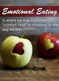 Eating Disorders & Emotional Eating PLR Image