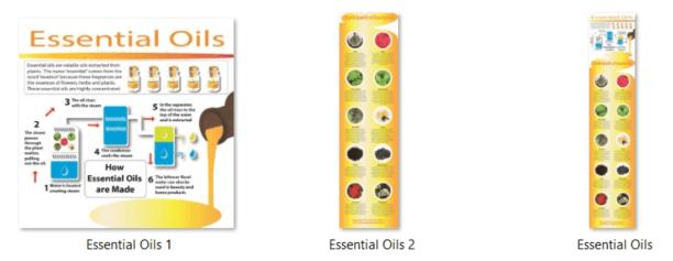 Essential Oils PLR Infographics