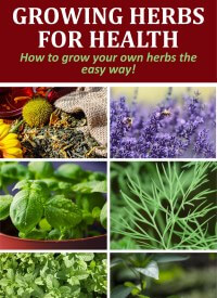 Herbs for Health PLR Special