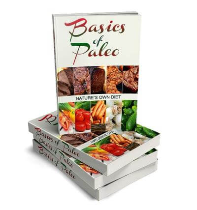Paleo PLR eBook Cover