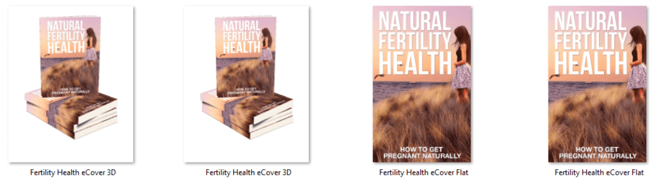 Womens Fertility Health PLR eCovers