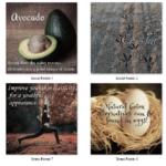Anti Aging PLR – Articles, Social Posters & More