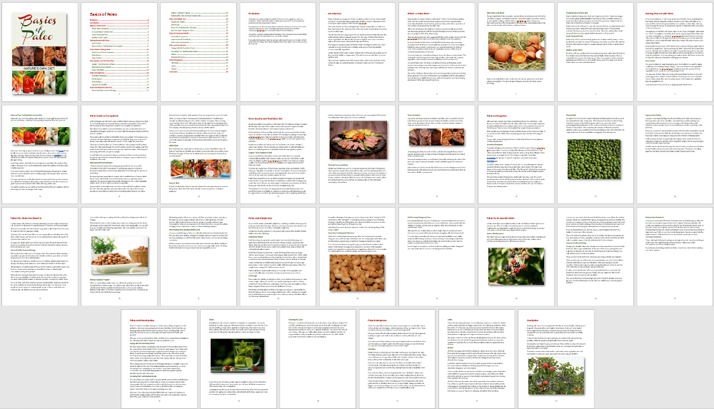 Paleo Diet eBook PLR