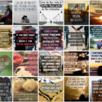 100 Love Quotes Social Posters PLR + FREE Bonus Gift!
