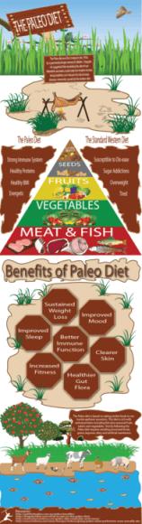 Paleo Infographic PLR