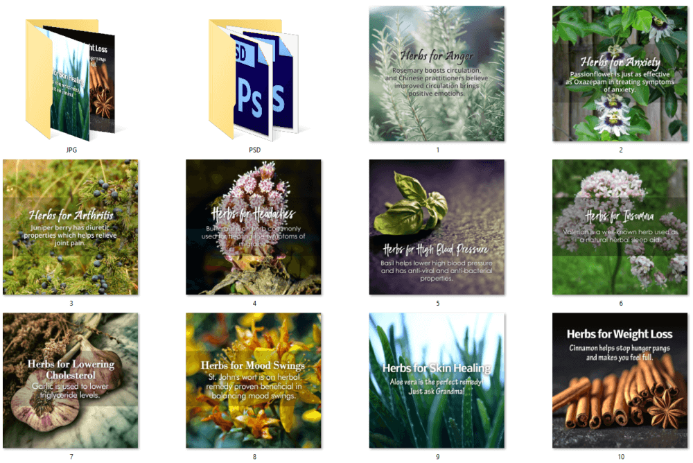 Herbs for Health eBook PLR Social Posters