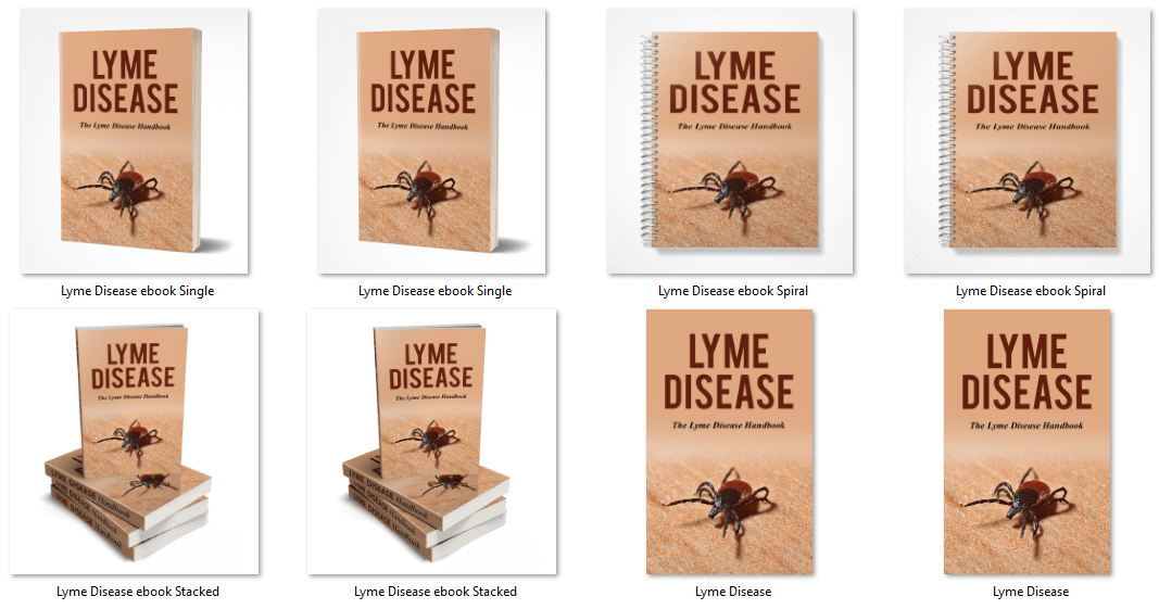 Lyme Disease PLR Report eCover graphics