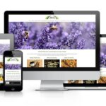 FAQ's for Website Designs