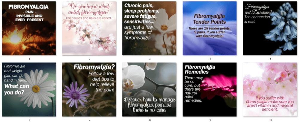 Fibromyalgia PLR Social Posters