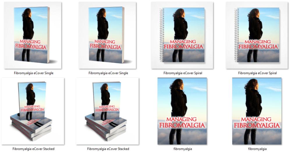 Fibromyalgia PLR eCover Graphics