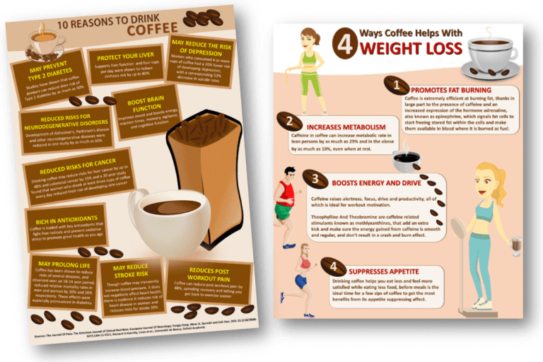 Coffee and Drinks Infographics PLR