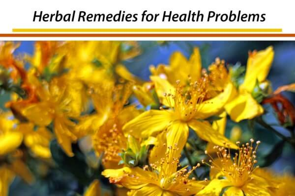 Herbal Remedies PLR