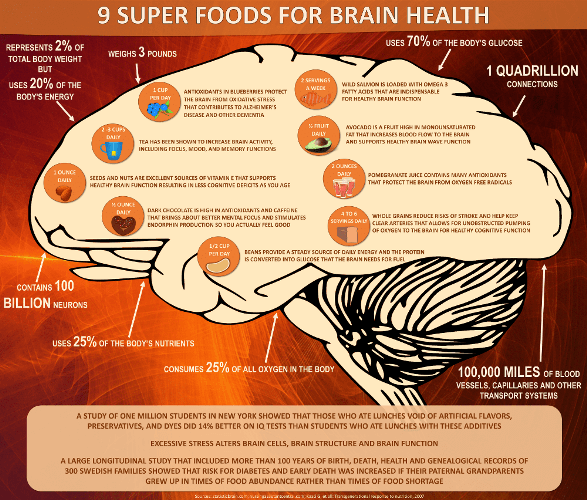 Holistic brain health and mental wellness plr bonus master plr superfoods for brain health plr infographic fandeluxe Images