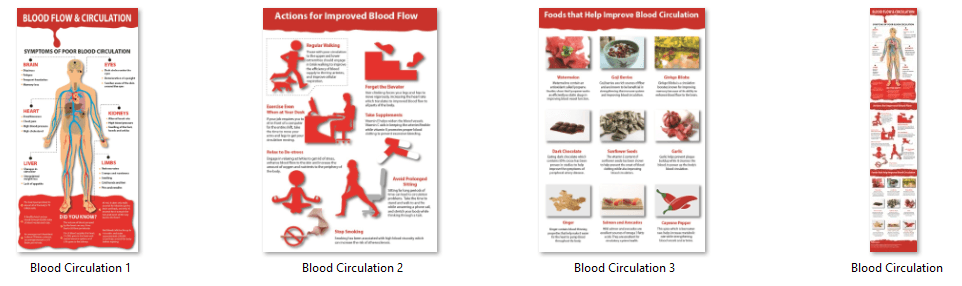Blood Flow and Circulation PLR Infographics