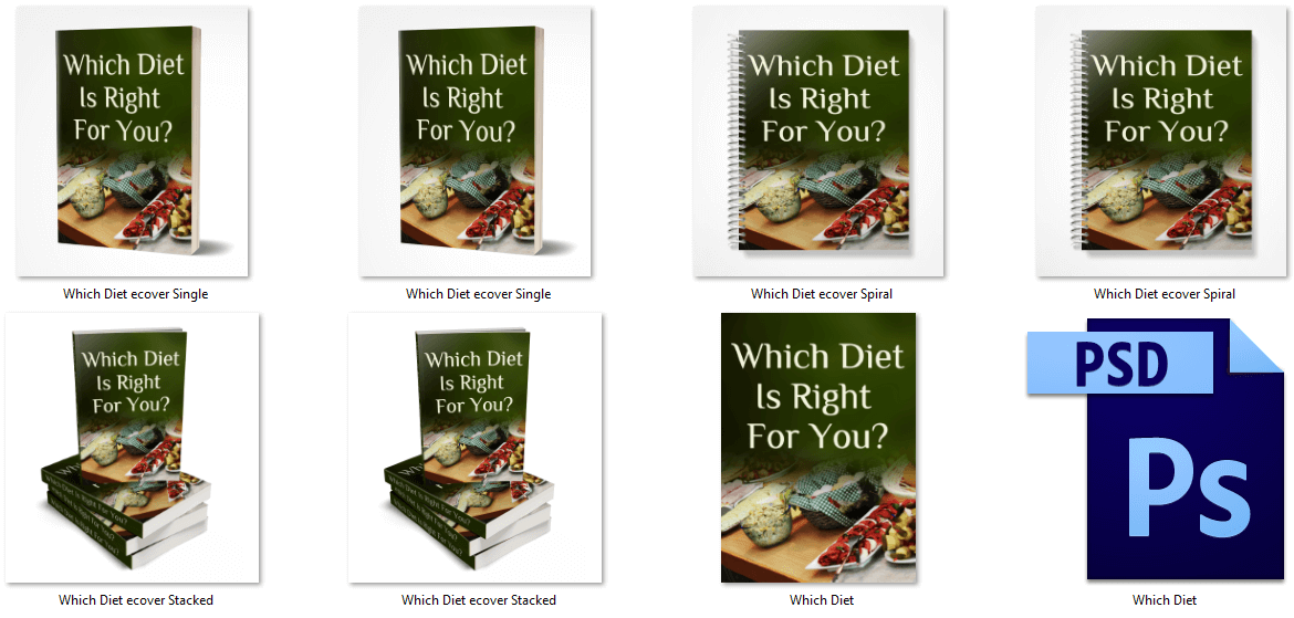 Which Diet Is Right For You PLR eBook Covers