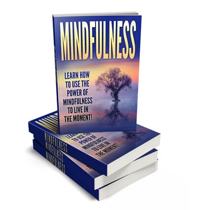 Mindfulness ecover graphic PLR