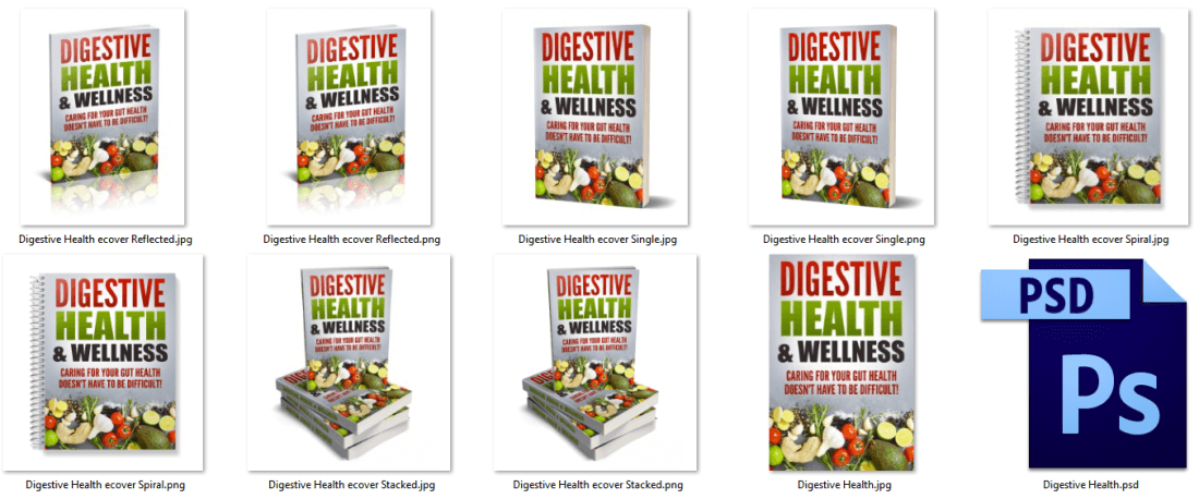 Digestive Health PLR eCover Graphics