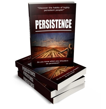 Persistence PLR eBook Cover