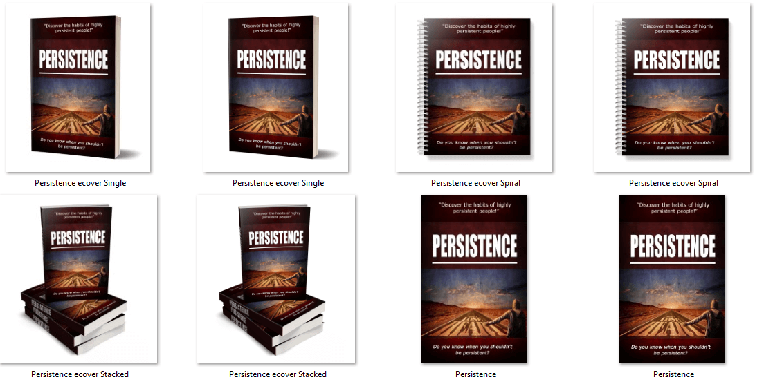 Persistence eBook PLR eCovers