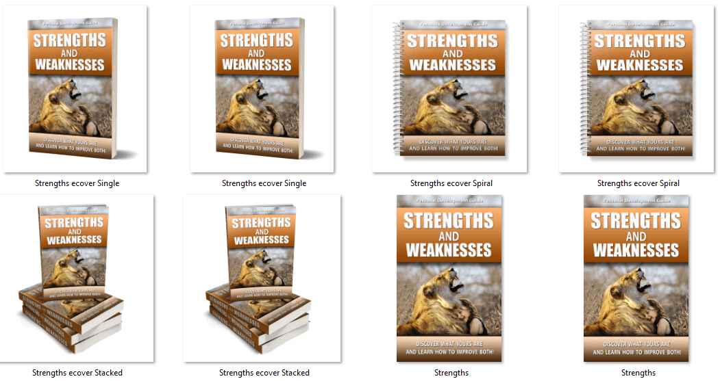 Strengths and Weaknesses PLR Report eCovers
