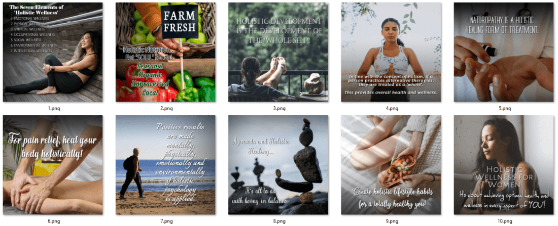 Holistic Wellness PLR Social Posters