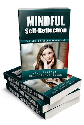 Mindful Self-Reflection PLR Report eCover