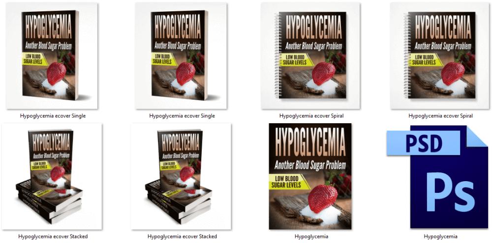 Hypoglycemia PLR Report eCover Graphics