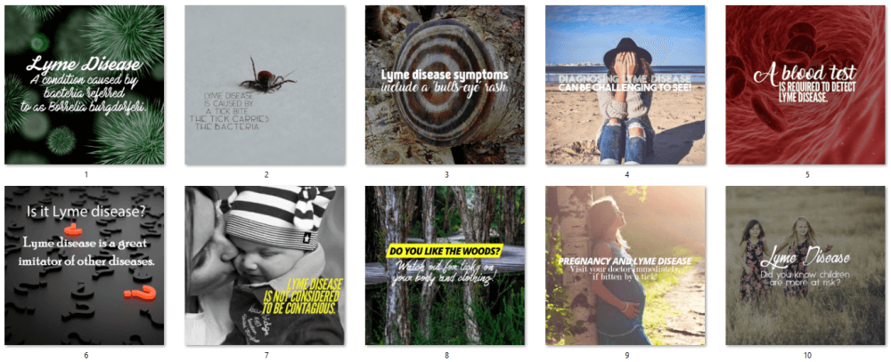 Lyme Disease PLR Social Posters
