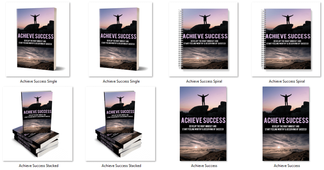 Achieve Success PLR Report eCover Graphics