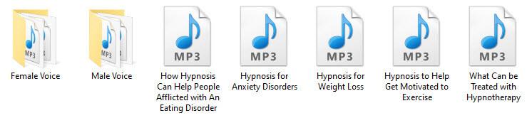 Hypnosis PLR Audio Files
