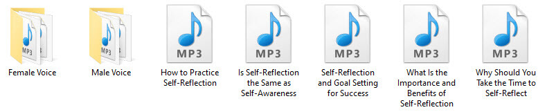 Mindful Self-Reflection PLR Audio Articles