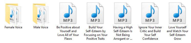 Self-Esteem PLR Audio Articles