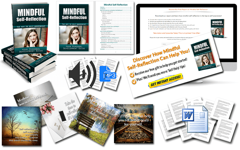 Self-Reflection PLR Package