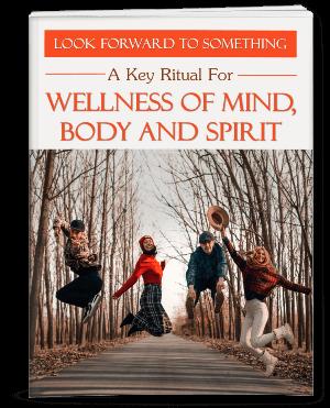 Wellness PLR report