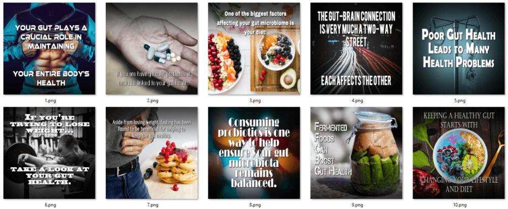 Gut Health PLR Social Posters