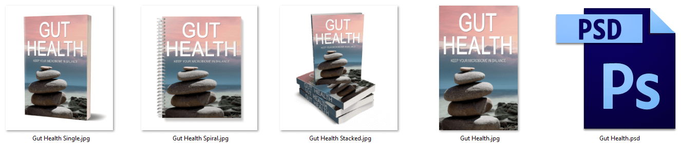Gut Health PLR eCover Graphics