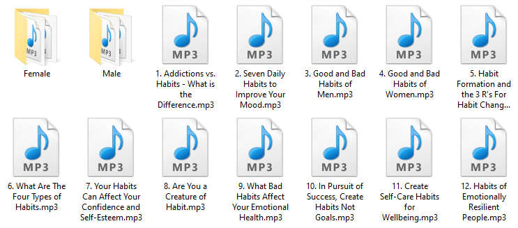 Habits PLR Audio Articles