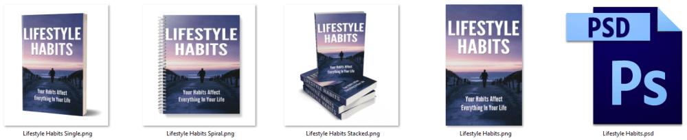 Lifestyle Habits PLR eCover Graphics