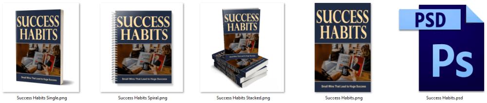 Success Habits PLR eCover Graphics