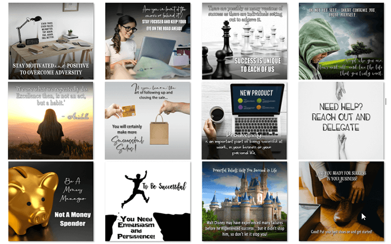Abundance and Success PLR Social Posters